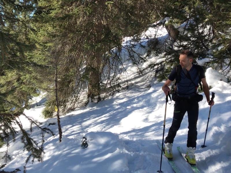 Initiation au ski de rando en pleine forêt